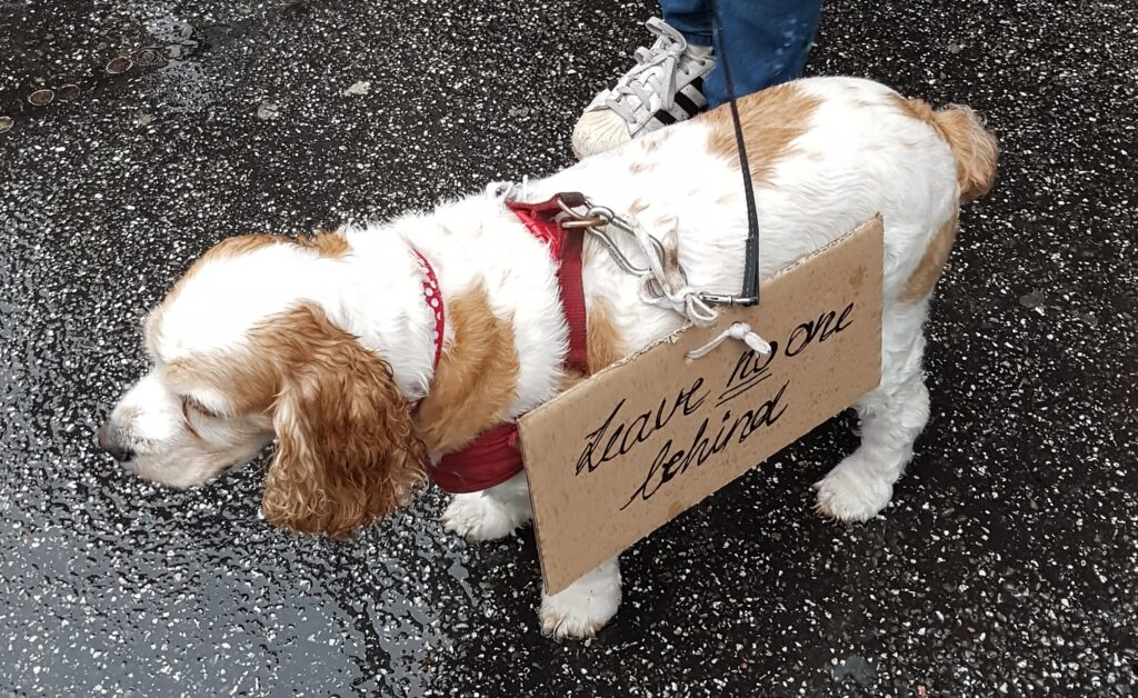 #leavenoonebehind demonstration doggie in the rain
